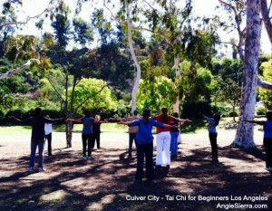 Angie Sierra los angeles Tai Chi, long beach tai chi, orange county tai chi.